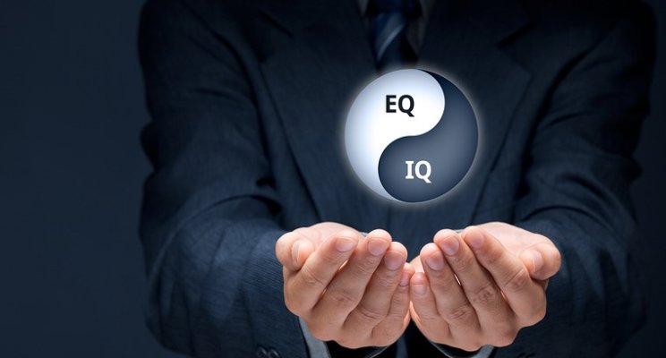 Emotional Equilibrium - Gain Control of Emotions  For Life Success